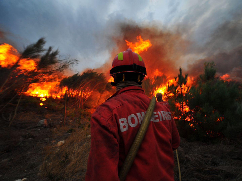 Incêndios: Homem confessa ter ateado nove fogos em Águeda em 2016