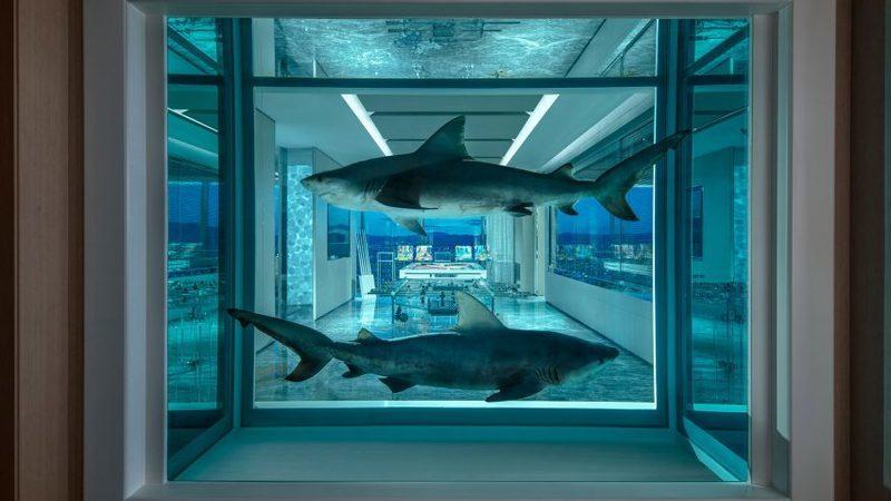 Este é o quarto de hotel mais caro do mundo. Até tem tubarões
