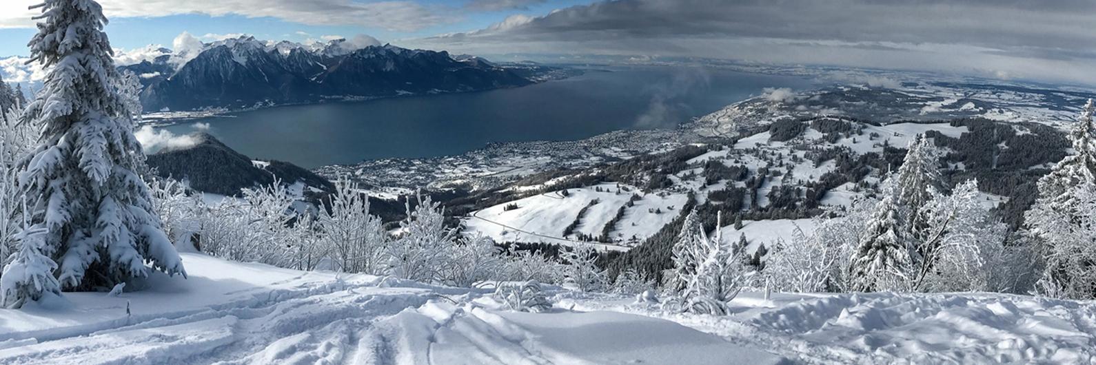 Resolução de 2019: férias na neve