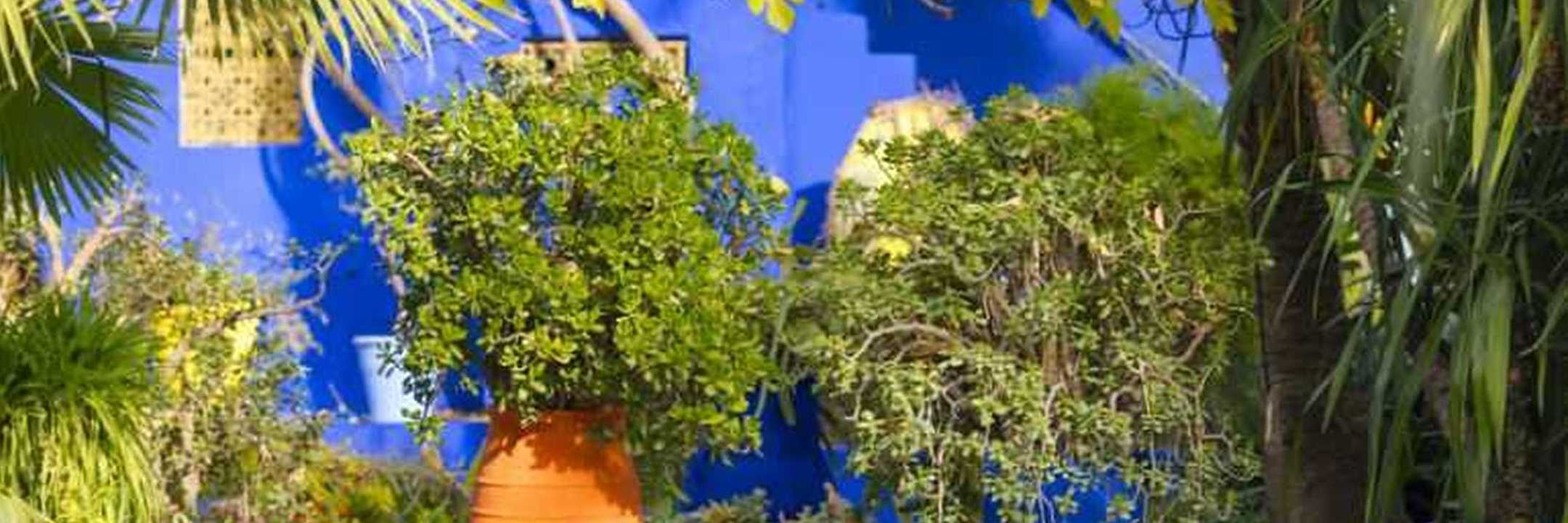 Conheça a casa-museu de Yves Saint Laurent