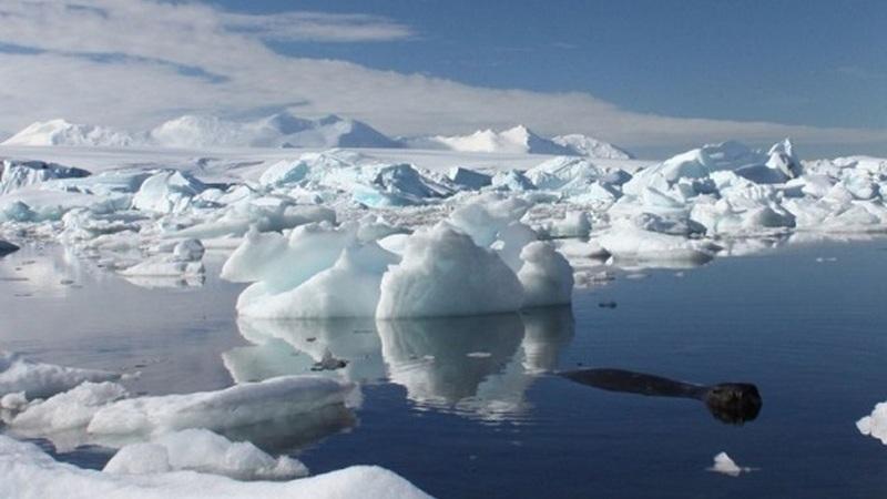 """""""Isto é apenas a ponta do iceberg"""": Perda anual de gelo da Antártida é seis vezes maior do que há 40 anos"""