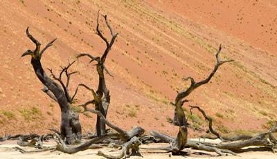Este é um dos lugares míticos da Terra. Conheça Sossusvlei, na Namíbia
