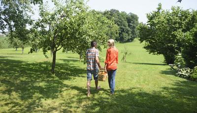 Paixão por árvores de fruto leva casal de gauleses a radicar-se em Portugal