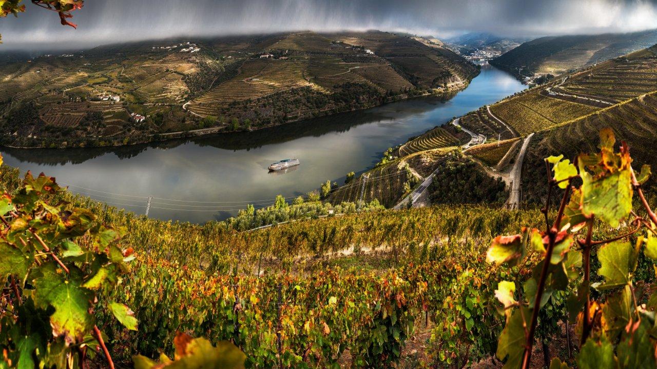 Wine & Music Valley, festival de música e gastronomia nas margens do Douro quer ser amigo do ambiente