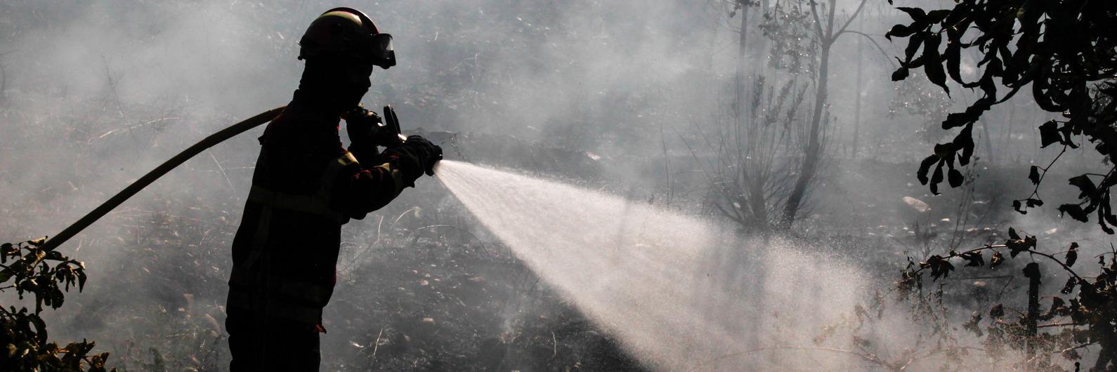 Incêndio da Covilhã, que obrigou à retirada de 90 pessoas, em fase de resolução