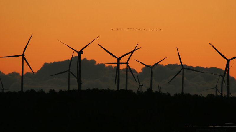 EDP Renováveis aumenta produção de eletricidade em 6% até setembro