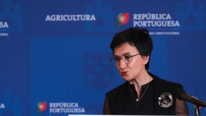 Governo admite recorrer a trabalhadores em lay-off para agricultura
