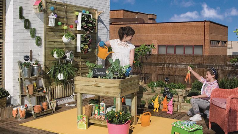 Vamos fazer uma horta vertical?