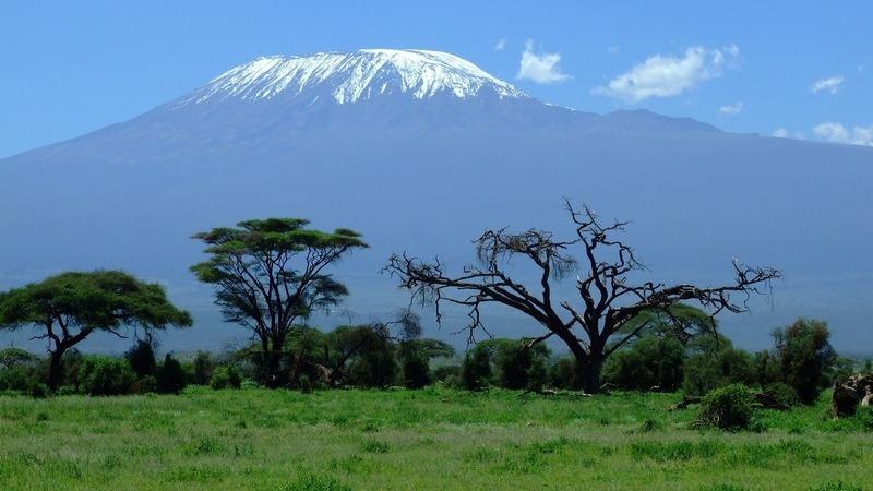 Advogados portugueses sobem os 5.895 metros do Kilimanjaro. Objetivo: ajudar quem ficou cá em baixo