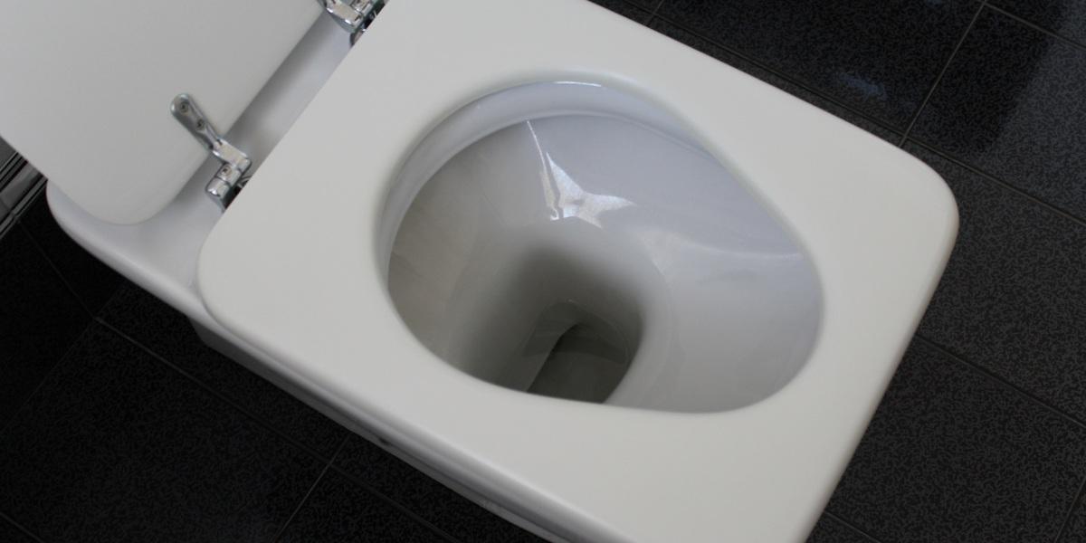 Mulher obteve o divórcio porque a casa onde vivia não tinha WC