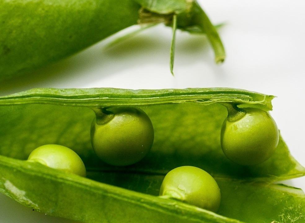 Quando comeu pela última vez ervilhas, campeãs das baixas calorias?