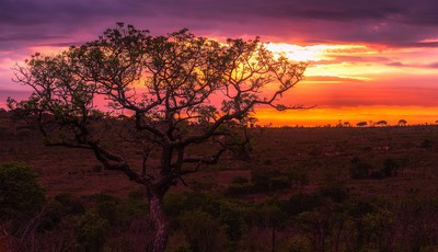 As 50 paisagens mais belas de África