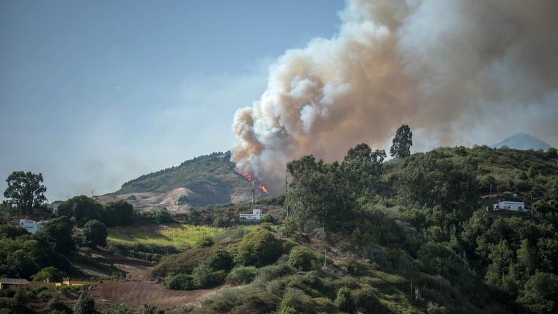Incêndio nas Canárias leva à retirada de mais de quatro mil pessoas de zona turística
