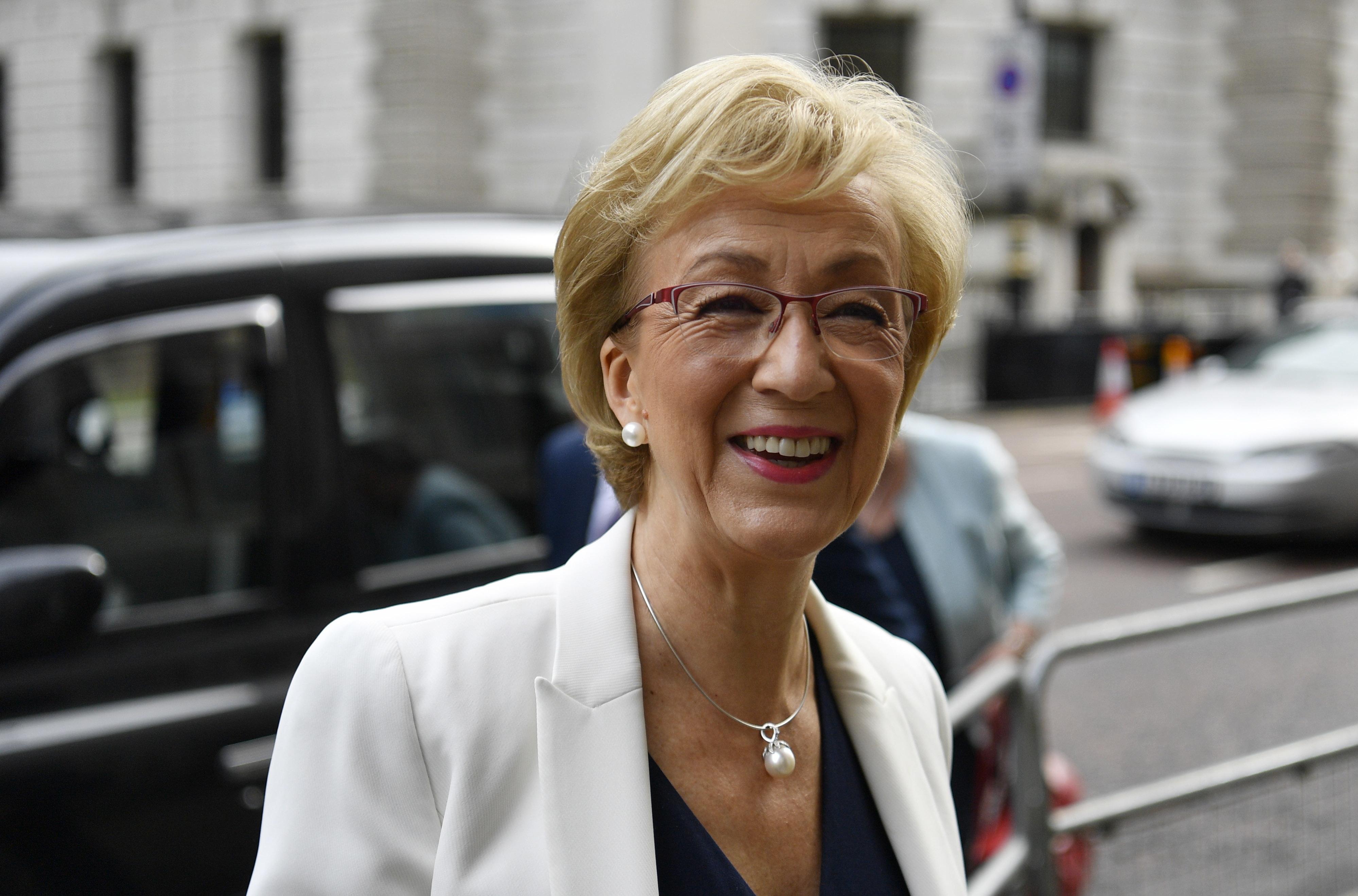 Andrea Leadsom terceira candidata conservadora a declarar apoio a Boris Johnson para primeiro-ministro