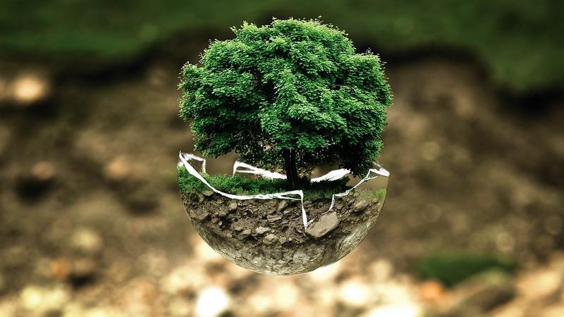 Financiamento do Green Deal preocupa eurodeputados portugueses