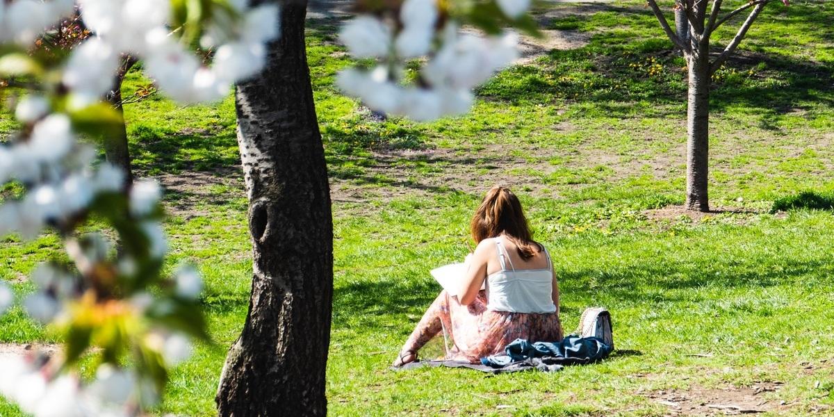 Lembre-se disto quando mudar de casa: viver a menos de 300 metros de um parque reduz o risco de cancro