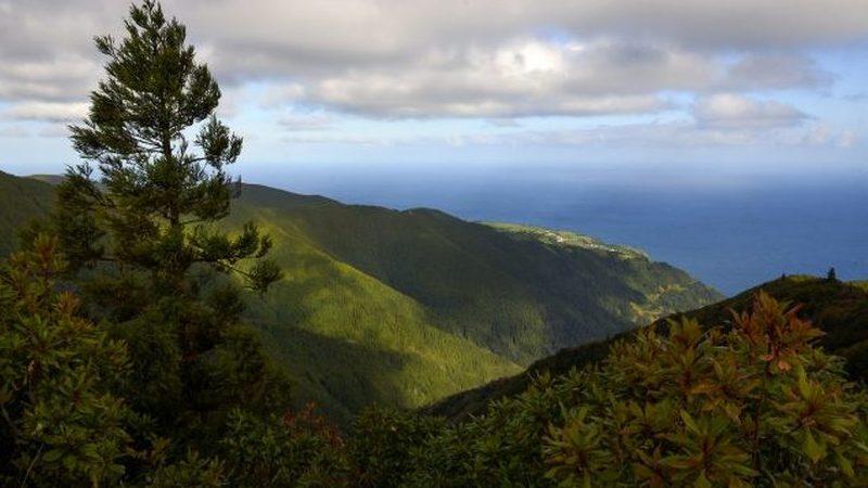 COVID-19: A história de um emigrante retido nos Açores sem os seus medicamentos