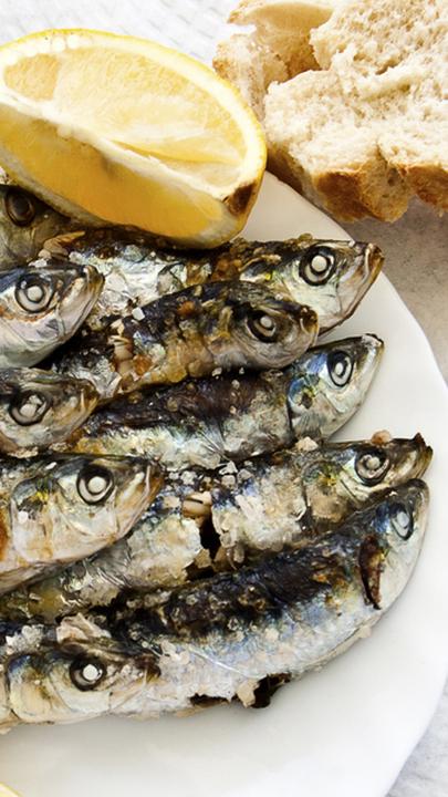 As regras de ouro para termos as melhores sardinhas na brasa