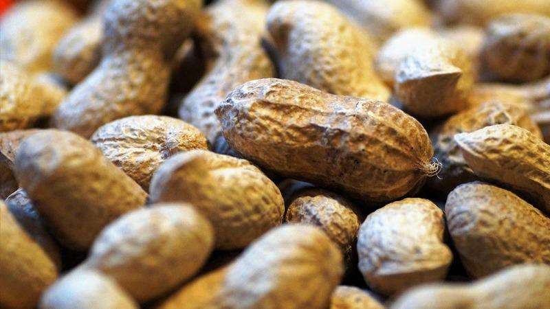 Família com alergias alimentares? Saiba os 6 hábitos diários que deve evitar
