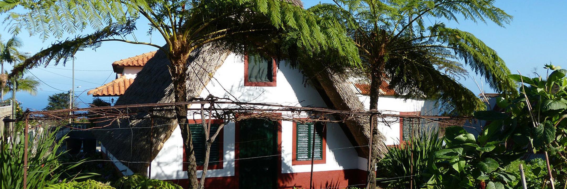 Madeira: uma ilha adorada por todos os visitantes