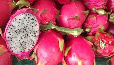 Conheça os benefícios da pitaya