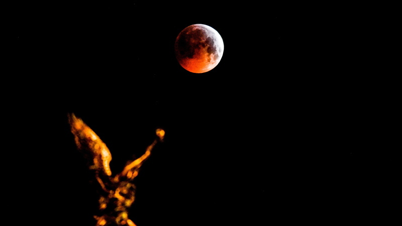 A noite em que a Lua ficou vermelha. Veja aqui as imagens do eclipse lunar