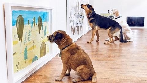 A primeira exposição de arte feita em exclusivo para os cães