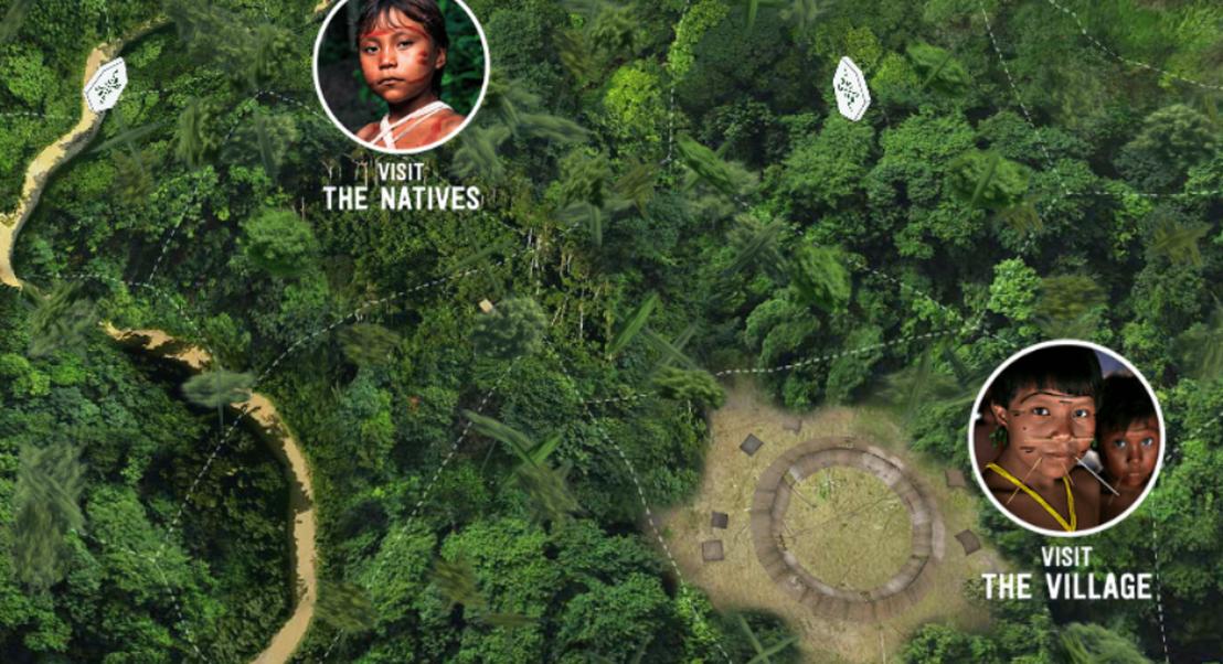 """Há um site que mostra a Amazónia sem incêndios e oferece uma """"viagem"""" pela floresta"""